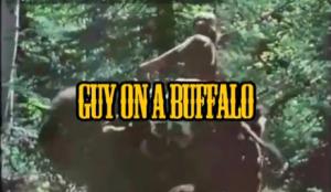 guyonbuffalo
